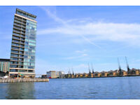 Exceptional 2 bedroom apartment in Royal Docks in beautiful private development with private balcony
