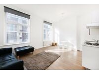 A COMFORTABLE 2 BEDROOM FLAT IN HORNSEY N19