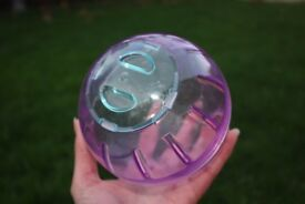 Dwarf Hamster, Mice, Gerbil Exercise Ball (like new condition, hardly used)