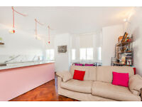 1 DOUBLE BEDROOM FLAT/LARGE RECEPTION/CONTEMPORARY KITCHEN/ROOF TERRACE