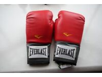 New Everlast Pro Boxing Gloves