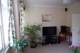 Professional couple or single for spacious, light, 1-bed flat in safe area with good transport links