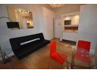 Nice and cosy studio flat /seperated bedroom in Earls Court, SW5