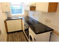 Good size 1 bedroom flat - above the shop - Gants Hill