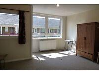 Three bedroom flat to rent, Harrow Road, W9