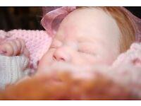 Reborn doll, fake baby, Chiara by Eva Brilli, Ltd Ed COA, dummy, clothing.