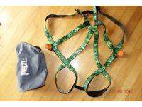 Petzl full body climbing harness
