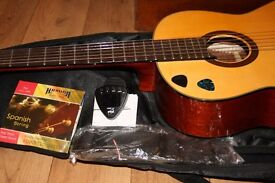 Aria Ak-35 53 Acoustic guitar in great condition, With padded bag, Spare strings and electric tuner
