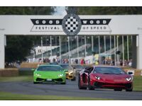 2 x Goodwood Festival Of Speed Tickets for Saturday 1st July 2017 (ADMISSION ONLY)