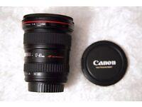 Canon EF 17-40 mm f/4.0 L USM Ultra-Wide Angle £400