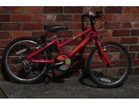 Raleigh D-LIGHT kids bike SHIMANO GEARS