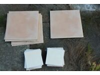 Floor And Wall Tiles For Kitchen/Bathroom