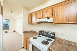 Queensgate Manor Now Offering 1 Bedroom Units Edmonton Edmonton Area image 5