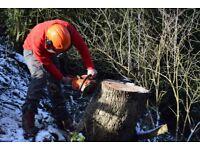 Nab Wood Tree Care - Proffessional Tree Surgeons, Based In Stockport