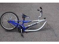 Trek tag along child's bike