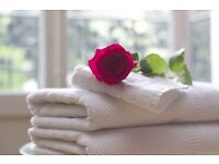 £10/h House/domestic cleaning and ironing services Noth West London