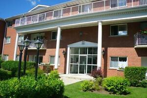 22 Greenwood Drive - One Bedroom Apartment Apartment for Rent