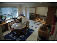 Double Room + private bathroom available in large fully furnished bungalow.