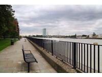 *BOX-ROOM* - cheap single room w/private balcony - Views of the River Thames/City/Gardens