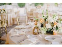 Assistant wedding planner