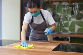 Domestic cleaner - available at short notice - Great attention to detail - try me!