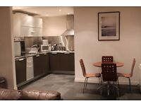 Fantastic 2 bed fully Furnished flat in the Metropoltian Building Leicester