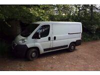 Handyman - Painting, Gardening, Tiling, Man in a Van!