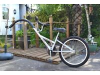 SILVER ALLYCAT CHILDS TAG BIKE 11 inch FRAME 20 inch WHEEL + SEAT POST CONNECTION + EXTENTION PIPE