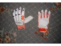 cricket gloves (New)
