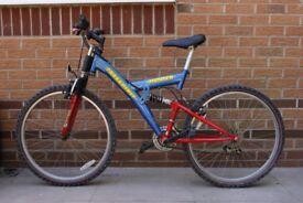 Mountain bike (Freespirit Hunter)