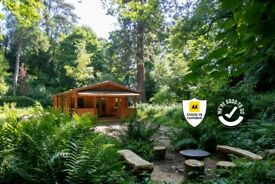 Log Cabin in the Woods - The Old Quarry (Somerset) - 16th-18th Nov (2 nights)