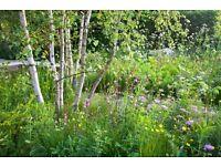 Landscaper Labourers & Garden Horticulturists