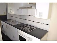 1 Double Bedroom + Lounge Flat *Newly Refurbished* Bus Route Only 2 Mins *Suitable For Professional*