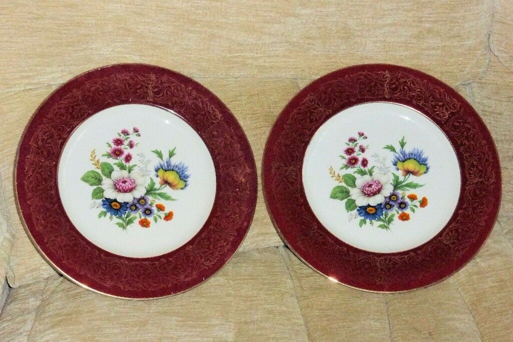 2 Beautiful Flower Pattern Plates 10.5 inches diameter Perfect for Serving Cakes etc & 2 Beautiful Flower Pattern Plates 10.5 inches diameter Perfect for ...