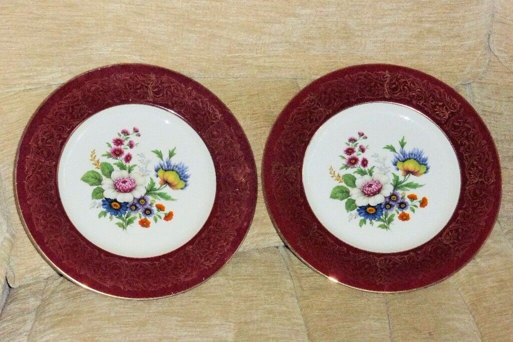2 Beautiful Flower Pattern Plates 10.5 inches diameter Perfect for Serving Cakes etc : flower pattern dinnerware - pezcame.com