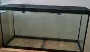 trade one tank for another(please read) 4ftx2ftx1.5ft