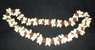 "Vintage Natural Shell and Koa Seed Long Necklace 19"""