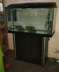 Aquael 200l aquarium fish tank with extras
