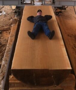 live edge table and boardroom table slabs
