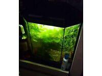 Fish tank Aquarium, 25L tropical