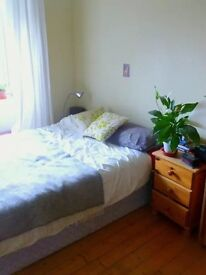 Bright, airy double room in Marchmont £400 pcm + bills
