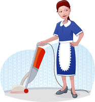 Full Time Cleaner for houses during the day