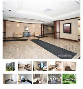15 Michael Power Place, Toronto Stratford Kitchener Area image 2