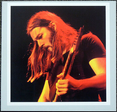 PINK FLOYD POSTER PAGE 1975 DAVID GILMOUR . H35