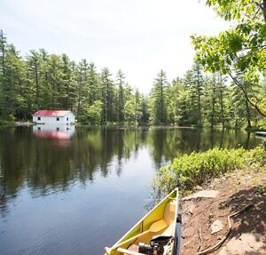 Vacation Rental on Fishog Lake, alternative Cottage and Camping