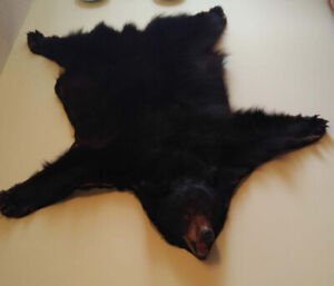 Black Bear Rug or Wall Hanging - This is a REAL Bear Rug