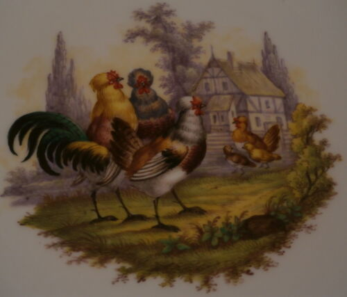 Antique Meissen Porcelain Chicken Scene Plate Porzellan Teller Scenic Bird Huhn