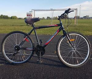 Vélo de montagne 18 vitesses