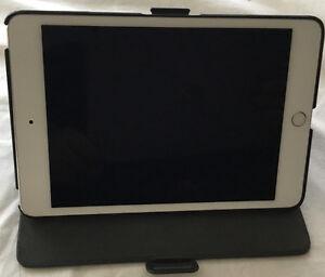 ipad mini 4 Wifi - 64 - GB couleur Argent acheté le 01 Juillet