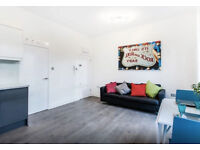 Super one bedroom flat in Exeter area
